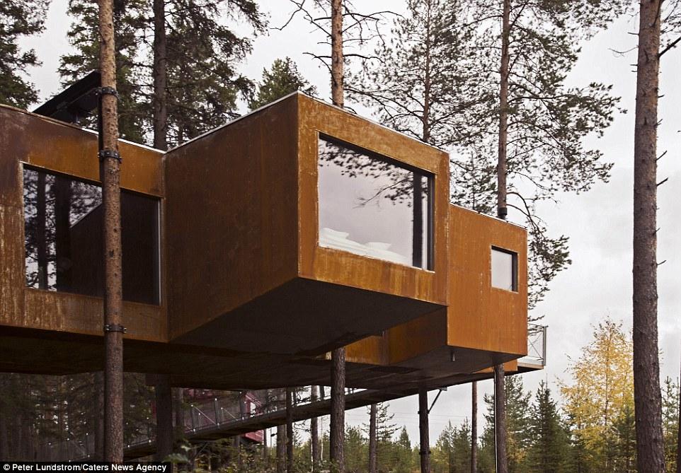 Scegliere di vivere in una casa sull 39 albero nel 2015 for Cabina nelle montagne della carolina del nord
