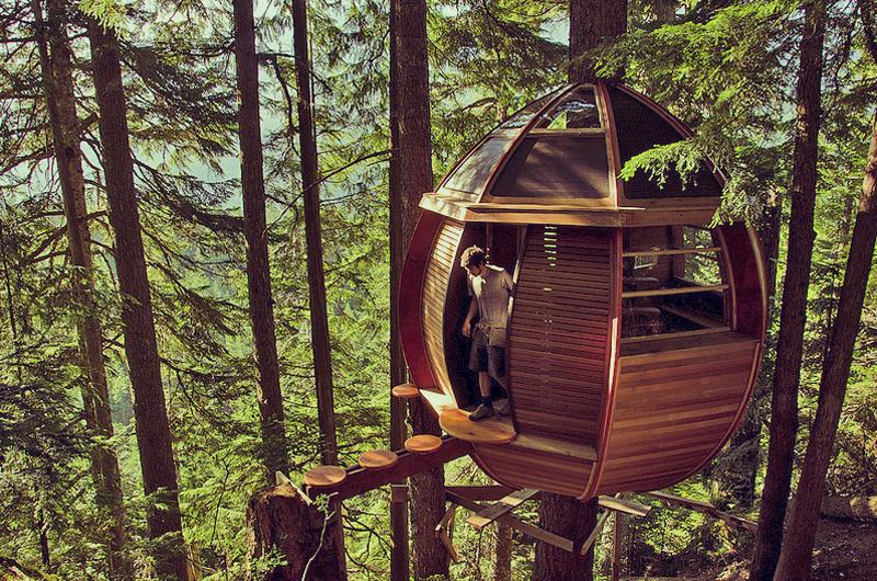 Scegliere di vivere in una casa sull 39 albero nel 2015 for Affitti della cabina di whistler