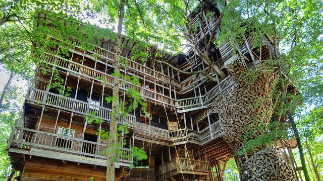 Casa sull albero agriturismo nettuno